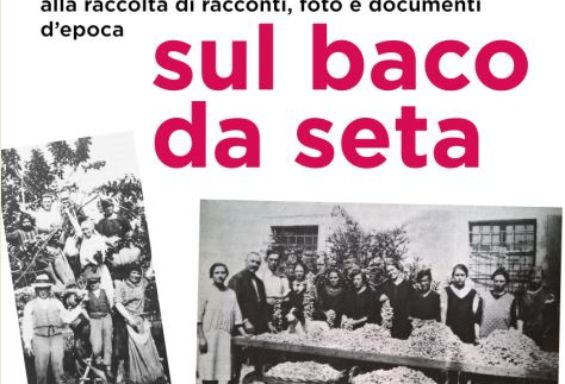 Raccolta documenti sul baco da seta